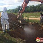 Đô Lương: Tiêu hủy trâu chết vận chuyển qua địa bàn