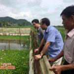 Mở lớp đào tạo nghề chăn nuôi thú y tại xã Nhân Sơn