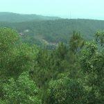 Đô Lương chủ động công tác phòng chống cháy rừng