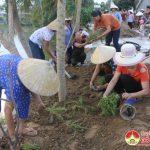 """Hội liên hiệp phụ nữ huyện xây dựng điểm mô hình """"5 không 3 sạch"""" tại xã Tân Sơn"""