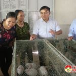 Đồng chí Ngọc Kim Nam Bí thư huyện ủy- Chủ tịch UBND huyện thăm các mô hình trang trại