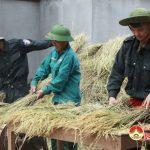 Học viên trường trung cấp cảnh sát hành động giúp nhân dân xã Nhân Sơn
