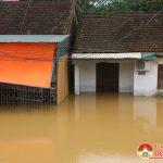 Đô Lương 6 nhà dân Thị trấn bị ngập nước