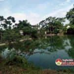 Minh Sơn: Nuôi vịt trong khu dân cư gây ô nhiễm môi trường