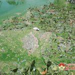 Nuôi vịt gây ô nhiễm môi trường ở xóm Văn Minh, xã Minh Sơn