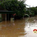 110 nhà dân khối 1 Thị trấn Đô Lương bị ngập sâu trong nước