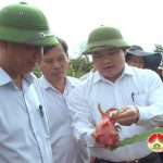 Sở KH&CN, UBND huyện Đô Lương hội thảo KH&CN cấp huyện năm 2018