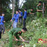 Đô Lương trồng 150 cây xanh tại đền Quả Sơn