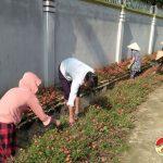 Trung Sơn xây dựng nông thôn mới gắn với môi trường xanh – sạch – đẹp