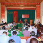 Hội đồng thẩm định nông thôn mới tỉnh thẩm định tại xã Lưu Sơn.