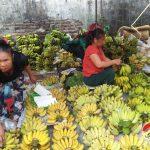 Đô Lương: Thị trường hoa quả phong phú phục vụ Rằm tháng giêng