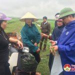 Đồng chí Nguyễn Trung Thành – Phó chủ tịch UBND huyện kiểm tra tình hình sâu bệnh trên cây trồng vụ xuân.