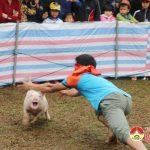 Đô Lương khai mạc bóng chuyền nam 4 huyện và tổ chức trò chơi dân gian