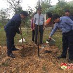 Đồng chí Phùng Thành Vinh – Chủ tịch UBND huyện Trồng cây đầu Xuân tại đền Khai Long