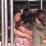 Thị trường thịt lợn ở Đô Lương không có biến động