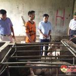 Đồng chí Nguyễn Trung Thành kiểm tra công tác phòng chống dịch tả lợn Châu Phi