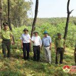 Chi cục kiểm lâm tỉnh kiểm tra công tác phòng cháy chữa cháy rừng tại Đô Lương