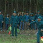 Đô Lương nâng cao chất lượng huấn luyện lực lượng tự vệ