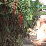 Cựu chiến binh Nguyễn Quang Cử- người tham gia chiến dịch  Điện Biên Phủ, sống tốt đời đẹp đạo