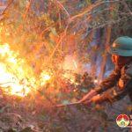 Đô Lương nỗ lực dập lửa cứu rừng.