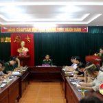 Huyện ủy tổ chức hội nghị công bố quyết định kiểm tra của Tỉnh ủy