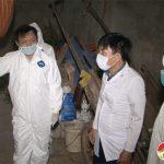 Đô Lương- Tích cực triển khai các biện pháp phòng, chống bệnh Dịch tả lợn Châu Phi