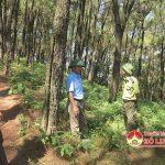 Đô Lương-Tăng cường thực hiện các biện pháp phòng cháy, chữa cháy rừng