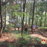 Đô Lương tăng cường thực hiện các biện pháp phòng cháy, chữa cháy rừng