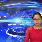 Chương trình thời sự Truyền hình Đô Lương ngày 15 tháng 6 năm 2020