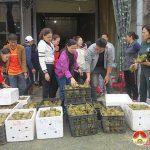 Đô Lương ủng hộ nhân dân miền Trung 440 triệu đồng và hàng chục tấn hàng hóa.