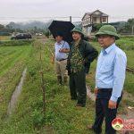 Đồng chí Nguyễn Trung Thành- Phó chủ tịch UBND huyện kiểm tra công tác phòng chống ảnh hưởng bão số 7