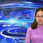 Chương trình thời sự truyền hình Đô Lương ngày 14  tháng 12  năm 2020