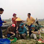 Nông dân Đô Lương khẩn trương sản xuất vụ Xuân năm 2021