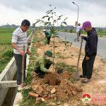 Xã Xuân Sơn tổ chức trồng cây đầu xuân Tân Sửu 2021