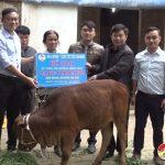 Nhóm Đô Lương chia sẻ yêu thương trao me giống cho hộ nghèo xã Nam Sơn