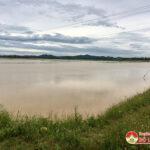 Đô Lương hàng trăm ha lúa mới gieo ngập chìm do mưa lớn