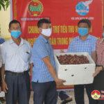 Đô Lương tổ chức hỗ trợ tiêu thụ nông sản cho nông dân