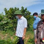 UBND huyện Đô Lương thẩm định kết quả xây dựng NTM tại xã Giang Sơn Tây
