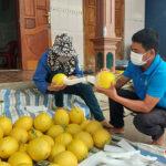 Anh Nguyễn Phùng Khởi thu hoạch sớm trên 3 tấn dưa chuột và Kim Hoàng Hậu trong nhà màng